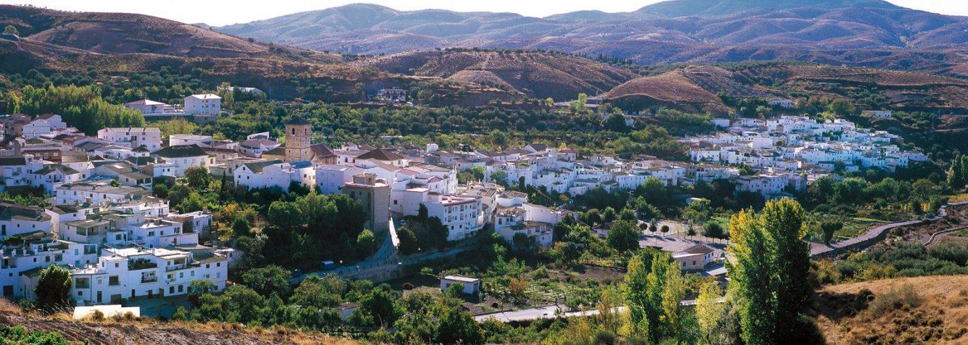 transporte y movilidad , asociaciones , tablón de anuncios y edictos Guadalinfo tramites online
